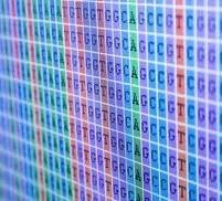 GeneScreening-201px-201x182