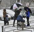 Новосибирский госуниверситет будет платить студентам за рождение детей