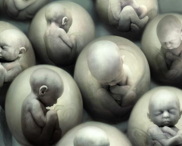 Репродуктивные технологии: суррогатное будущее без будущего
