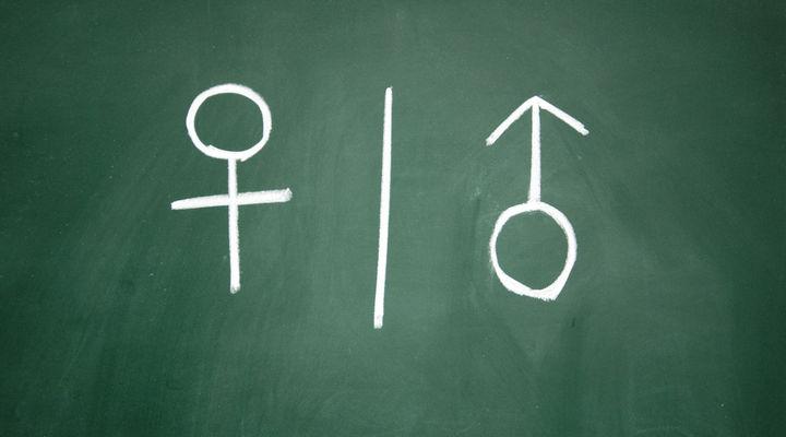 Секспросвет склоняет к распутству: результаты опроса в Великобритании