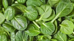 spinach-1501218_960_720