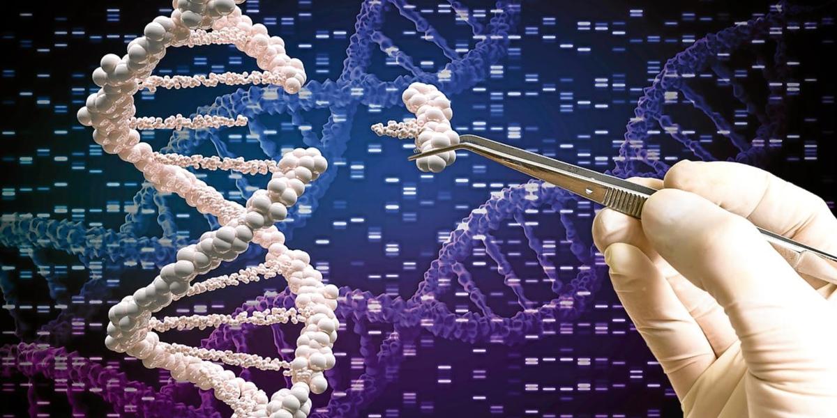 Медицина и генная инженерия: достижения и проблемы (на пересечении биологии, медицины и биоэтики)